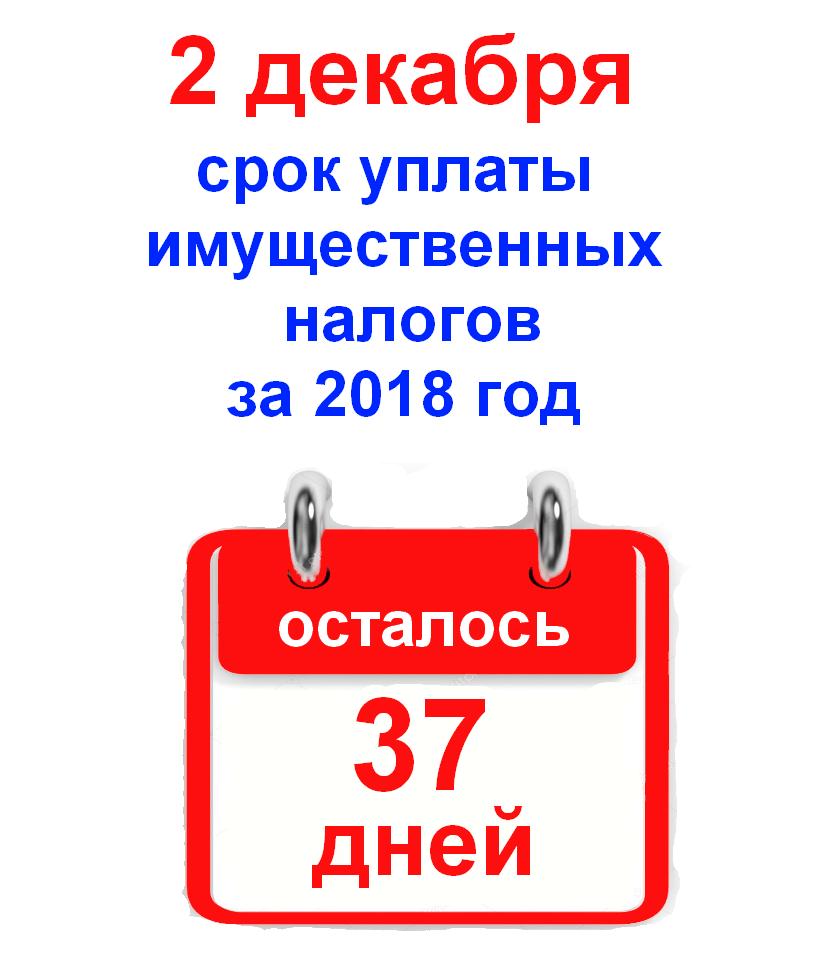 2 ДЕКАБРЯ срок уплаты имущественных налогов за 2018 год
