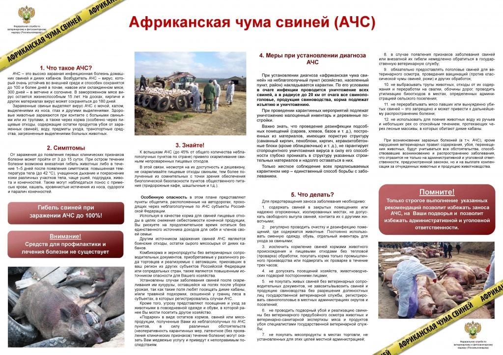 На территории россии в 2016 году было зарегистрировано 282 вспышки африканской чумы свиней (ачс)